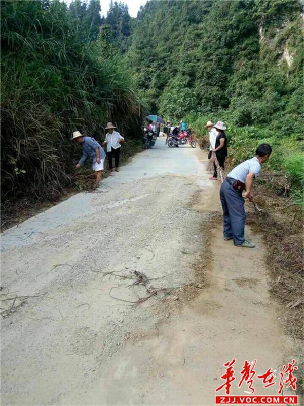 桑植:沙塔坪乡环境治理全民大动员